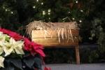 011-christmas-decorations